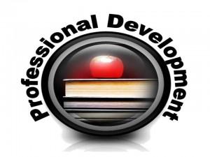 professional d